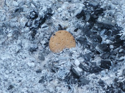 and a very unexplained cookie in the remains of the fire